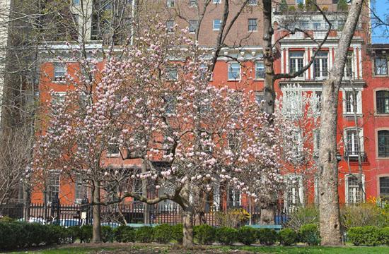 Happy Spring 2009